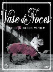 Image dvd Vase de Noces